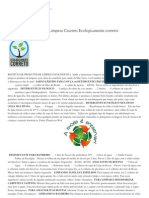 Como Fazer Produtos de Limpeza Caseiros Ecologicamente Corretos