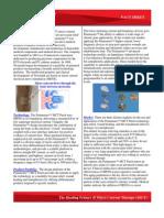 Painmaster Fact Sheet FRP