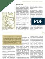 Cartilla Educativa Sierra de Las Quijadas.Parte VI