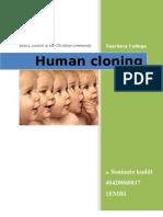 Human Cloning Ethics. Manusia kloning etika