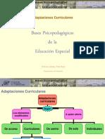 1-7-adaptacionescurriculares-2009-101009142314-phpapp01