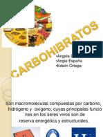 CARBOHIBRATOS