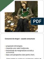 Consumul de Droguri