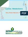 lípidos_metabolismo
