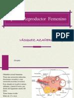 Aparato Reproductor femeniNO.ppt