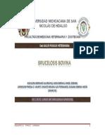 BRUCELOSIS BOVINA -ADELANTO EQUIPO 6.doc