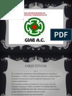 Presentación promocion GIAB A.C.