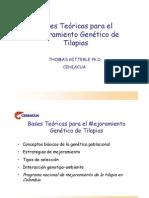 Bases Teóricas para el Mejoramiento Genético de Tilapias