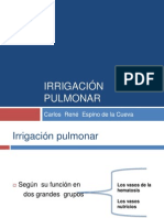 pulmones-110312211057-phpapp01