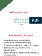 4.2_recambio_proteico_13