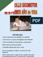 DSM 7 -12 meses
