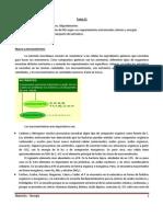 Temas 11, 12 y 13 Resumen