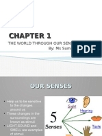 Chapter 1_The World Through Our Senses