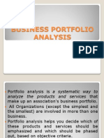 Business Portfolio Analysis