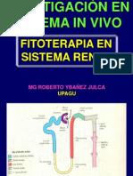 Fitoterapia en sISTEMAS in VIVO I