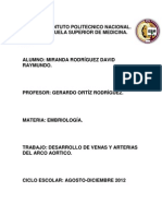 Desarrollo de Arterias y Venas Del Arco Aortico