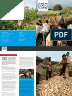 ICS factfolder Tanzania Meatu Agribusiness