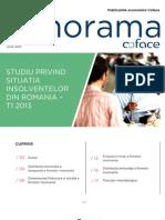 Coface Studiu Privind Situatia Insolventelor Din Romania T1 2013