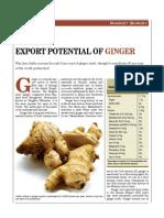 Ginger MARKET ANALYSIS