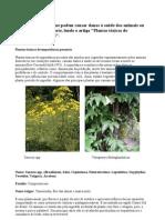Plantas-Tóxicas.doc