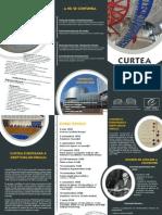 RON_Court_in_brief.pdf