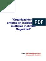 Organizacion Del Entorno en Incidentes de Multiples Victimas. Seguridad