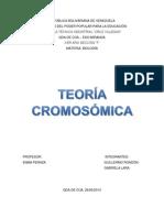 TEORÍA CROMOSÓMICA.docx