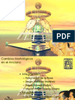 geriatria-dental-1197316498314675-2