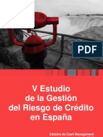 V Estudio Gestion Riesgo de Credito