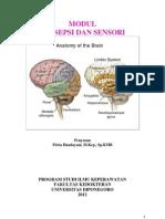Persepsi Dan Sensori 2011 Buku Ajar