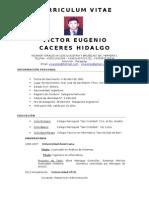 Curriculum Vitae - Victor Cáceres Hidalgo TC