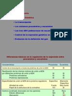 Tema6regulacion3SemI 2010