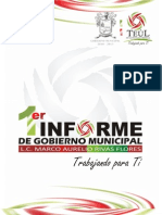 Primer Informe (Completo)2010-2013