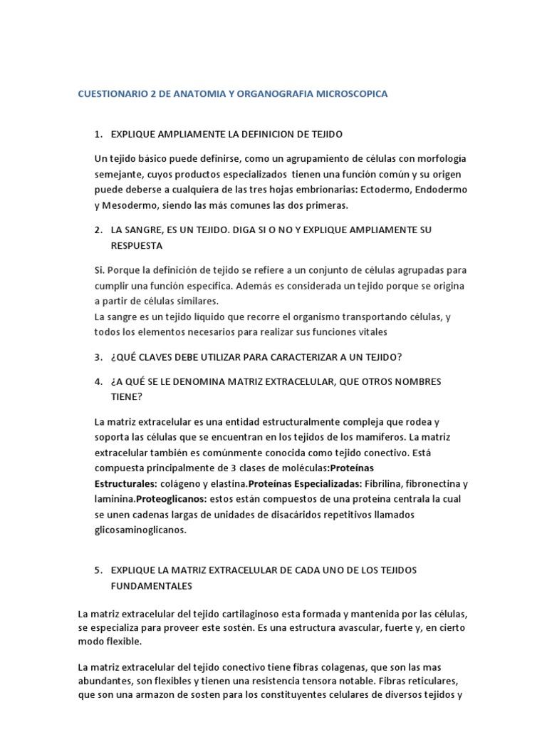 Excepcional Anatomía Tejidos Epiteliales Hoja De Respuestas Ideas ...