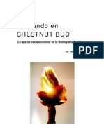 Pens an Do Chestnut Bud