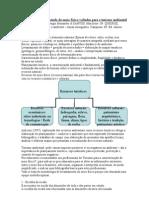 3 Metodologias para estudo do meio físico voltadas para o turismo ambiental.doc