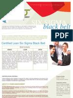 LSSBB Course Description