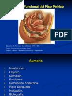 Anatomia Funcional Del Piso Pelvico Copia