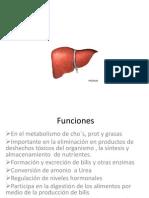 ENFERMEDADES HEPASTICAS POCHA.pptx