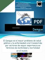 Dengue Presentacion Rodo