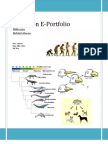 nikkatan evolution e-portfolio