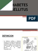 diabetesmellitus-110526121305-phpapp02
