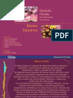 P0001 File Articles-66660 ArchivoPowerPoint 0