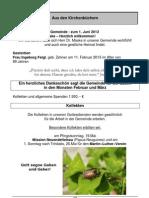 seite 13 pdf