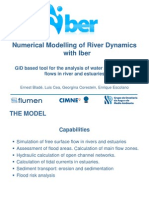 File_1_12_Numerical Modelling of River Dynamics Wi