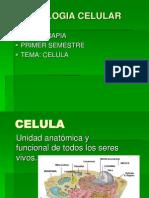 Biologia Celular[3]