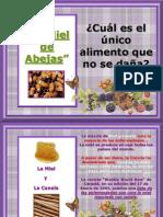 Miel_de_abejas de SA