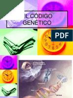 Codigo Genetico4toBmartes4
