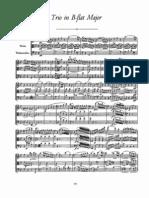 Schubert String Trio in Bb D471