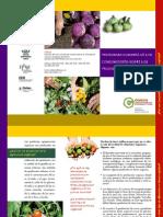 Preguntas Comunes Producto Organico